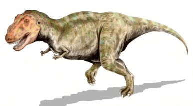 Tyrannosaurus_BW